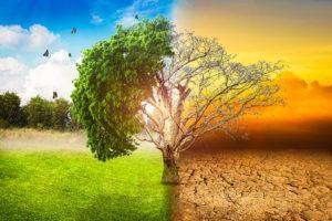 Incidences géopolitiques du dérèglement climatique